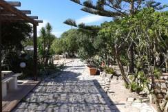 giardino e viale