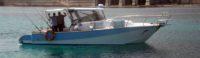 Charter di Pesca Favignana