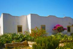 """ Villa la Pineta ""Casette con giardino fiorito in pineta"