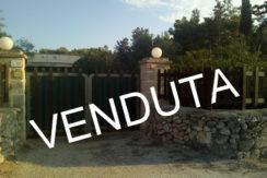 Villetta 50 mq con pergolato e 2100 mq terreno